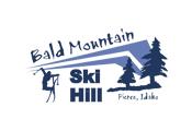 [Bald Mountain Logo]